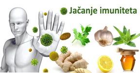 zdrav-imunoloski-sistem