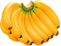 cudotvorna-moc-banane