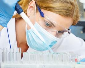 Kakvu ulogu ima hormon estradiol u organizmu?