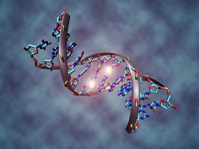 Naziv i značaj epigenetike